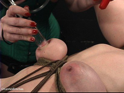 Photo number 9 from Dumb Blonde Dominated shot for Chantas Bitches on Kink.com. Featuring Anita Blue and Mz Berlin in hardcore BDSM & Fetish porn.