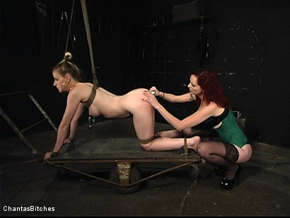 Photo number 4 from Dumb Blonde Dominated shot for Chantas Bitches on Kink.com. Featuring Anita Blue and Mz Berlin in hardcore BDSM & Fetish porn.