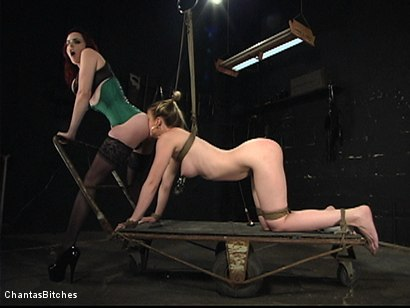 Photo number 8 from Dumb Blonde Dominated shot for Chantas Bitches on Kink.com. Featuring Anita Blue and Mz Berlin in hardcore BDSM & Fetish porn.