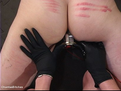 Photo number 6 from Slut Bag 68 shot for Chantas Bitches on Kink.com. Featuring Audrey Leigh and Kristine in hardcore BDSM & Fetish porn.