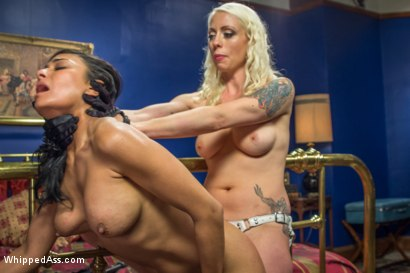 Photo number 9 from Lesbian Call Girl shot for Whipped Ass on Kink.com. Featuring Lorelei Lee and Beretta James in hardcore BDSM & Fetish porn.