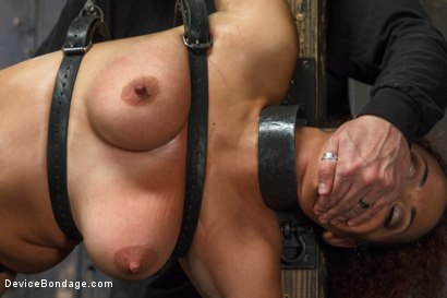 Photo number 2 from Samoan beauty with huge natural tits is tormented and fucked!!! shot for Device Bondage on Kink.com. Featuring Serena Ali in hardcore BDSM & Fetish porn.