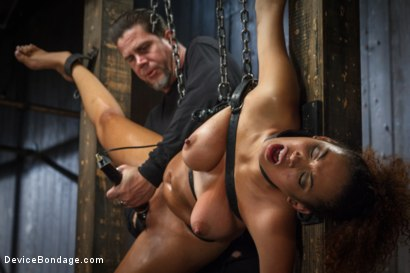 Photo number 3 from Samoan beauty with huge natural tits is tormented and fucked!!! shot for Device Bondage on Kink.com. Featuring Serena Ali in hardcore BDSM & Fetish porn.