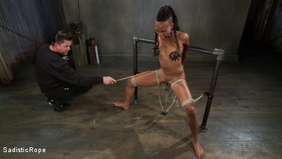Photo number 4 from Extreme Bondage, Water Boarding, Evil Torment, & Intense Orgasms!! shot for Sadistic Rope on Kink.com. Featuring Nikki Darling in hardcore BDSM & Fetish porn.