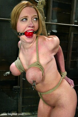 Photo number 5 from Darling shot for Hogtied on Kink.com. Featuring Dee Williams in hardcore BDSM & Fetish porn.