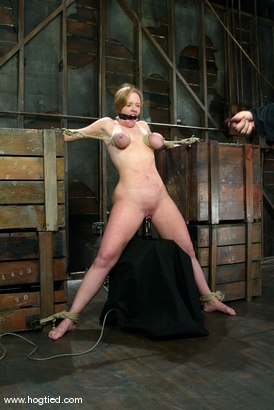Photo number 8 from Darling shot for Hogtied on Kink.com. Featuring Dee Williams in hardcore BDSM & Fetish porn.