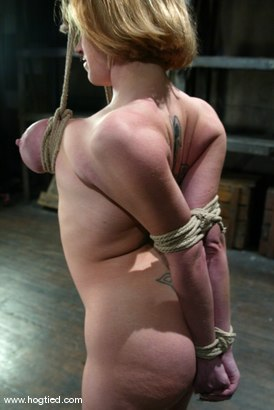 Photo number 10 from Darling shot for Hogtied on Kink.com. Featuring Dee Williams in hardcore BDSM & Fetish porn.