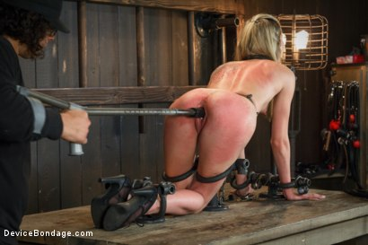 Photo number 8 from <strong>Fresh Meat</strong><br>Young blonde slut tormented by Orlando shot for Device Bondage on Kink.com. Featuring Orlando and Tysen Rich in hardcore BDSM & Fetish porn.