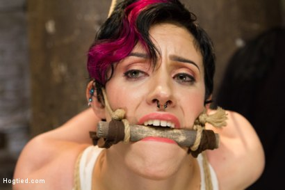 Photo number 3 from Requests Fulfilled: Impossible Bondage Positions shot for Hogtied on Kink.com. Featuring Iona Grace in hardcore BDSM & Fetish porn.