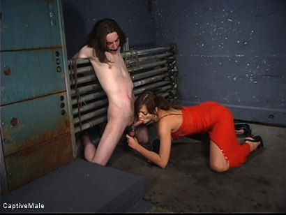 Photo number 12 from Pavlovian Training shot for Captive Male on Kink.com. Featuring Kade and Nika Noire in hardcore BDSM & Fetish porn.