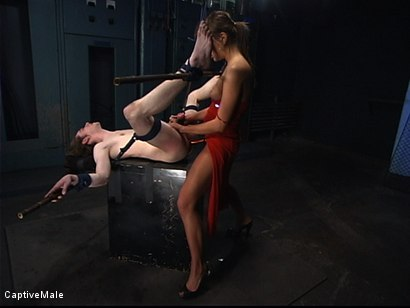 Photo number 7 from Pavlovian Training shot for Captive Male on Kink.com. Featuring Kade and Nika Noire in hardcore BDSM & Fetish porn.