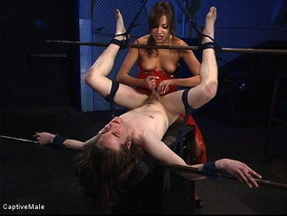 Photo number 8 from Pavlovian Training shot for Captive Male on Kink.com. Featuring Kade and Nika Noire in hardcore BDSM & Fetish porn.