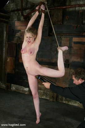 Photo number 14 from Haley Scott shot for Hogtied on Kink.com. Featuring Haley Scott in hardcore BDSM & Fetish porn.