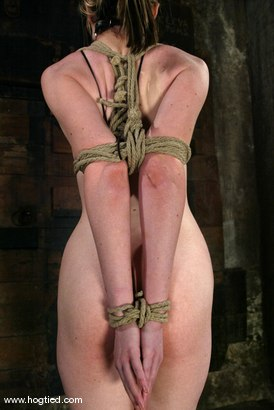 Photo number 4 from Haley Scott shot for Hogtied on Kink.com. Featuring Haley Scott in hardcore BDSM & Fetish porn.