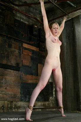 Photo number 9 from Haley Scott shot for Hogtied on Kink.com. Featuring Haley Scott in hardcore BDSM & Fetish porn.