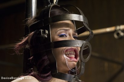 Photo number 1 from Kristina Rose - Overwhelmed with Brutal Bondage and Non-stop Torment  shot for Device Bondage on Kink.com. Featuring Kristina Rose in hardcore BDSM & Fetish porn.