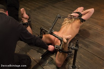 Photo number 4 from Dahlia Sky aka Bailey Blue, Destroyed by Brutality shot for Device Bondage on Kink.com. Featuring Dahlia Sky and Orlando in hardcore BDSM & Fetish porn.