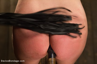 Photo number 7 from Dahlia Sky aka Bailey Blue, Destroyed by Brutality shot for Device Bondage on Kink.com. Featuring Dahlia Sky and Orlando in hardcore BDSM & Fetish porn.
