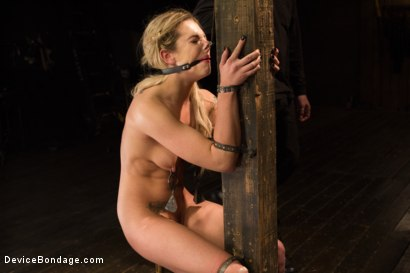 Photo number 8 from Dahlia Sky aka Bailey Blue, Destroyed by Brutality shot for Device Bondage on Kink.com. Featuring Dahlia Sky and Orlando in hardcore BDSM & Fetish porn.
