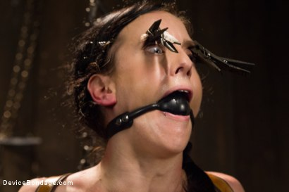 Photo number 7 from Annihilation of Elise Graves shot for Device Bondage on Kink.com. Featuring Elise Graves in hardcore BDSM & Fetish porn.