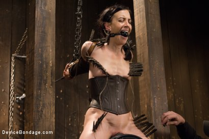 Photo number 8 from Annihilation of Elise Graves shot for Device Bondage on Kink.com. Featuring Elise Graves in hardcore BDSM & Fetish porn.