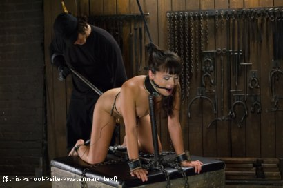 Photo number 11 from Asian Whore is Shocked and Fucked into Oblivion  shot for Device Bondage on Kink.com. Featuring Orlando and Milcah Halili in hardcore BDSM & Fetish porn.