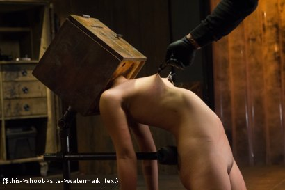 Photo number 6 from Asian Whore is Shocked and Fucked into Oblivion  shot for Device Bondage on Kink.com. Featuring Orlando and Milcah Halili in hardcore BDSM & Fetish porn.