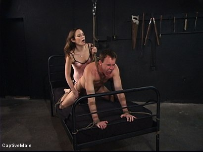 Photo number 13 from An Inordinate Amount Of Pain shot for Captive Male on Kink.com. Featuring Amber Rayne and Wild Bill in hardcore BDSM & Fetish porn.