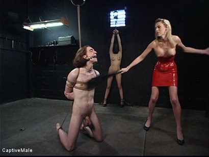 Photo number 2 from Miss Audrey's Slaves shot for Captive Male on Kink.com. Featuring Lexi Belle, Audrey Leigh and Kade in hardcore BDSM & Fetish porn.