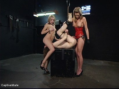 Photo number 8 from Miss Audrey's Slaves shot for Captive Male on Kink.com. Featuring Lexi Belle, Audrey Leigh and Kade in hardcore BDSM & Fetish porn.