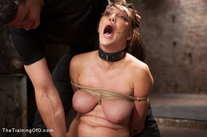 Photo number 15 from The Training of an Undisciplined Little Fuck Toy, Day One shot for The Training Of O on Kink.com. Featuring Holly Michaels in hardcore BDSM & Fetish porn.