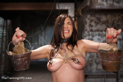 Photo number 6 from The Training of an Undisciplined Little Fuck Toy, Day One shot for The Training Of O on Kink.com. Featuring Holly Michaels in hardcore BDSM & Fetish porn.