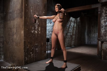 Photo number 3 from The Training of an Undisciplined Little Fuck Toy, Day One shot for The Training Of O on Kink.com. Featuring Holly Michaels in hardcore BDSM & Fetish porn.