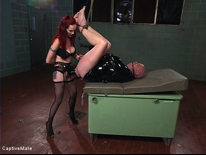 Photo number 15 from The Fisting shot for Captive Male on Kink.com. Featuring Mz Berlin and Patrick Andraste in hardcore BDSM & Fetish porn.