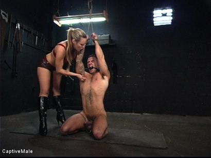 Photo number 1 from The Client shot for Captive Male on Kink.com. Featuring Harmony and Dak Ramsey in hardcore BDSM & Fetish porn.