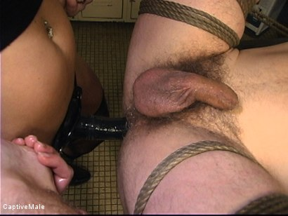 Photo number 14 from Bitch Boy's Urges shot for Captive Male on Kink.com. Featuring Mark Frenchy and Harmony in hardcore BDSM & Fetish porn.