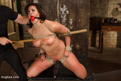 Photo number 13 from Busty MILF's hot little mouth gets her in trouble shot for Hogtied on Kink.com. Featuring Penny Barber in hardcore BDSM & Fetish porn.