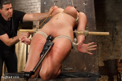 Photo number 14 from Busty MILF's hot little mouth gets her in trouble shot for Hogtied on Kink.com. Featuring Penny Barber in hardcore BDSM & Fetish porn.