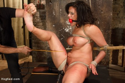 Photo number 9 from Busty MILF's hot little mouth gets her in trouble shot for Hogtied on Kink.com. Featuring Penny Barber in hardcore BDSM & Fetish porn.