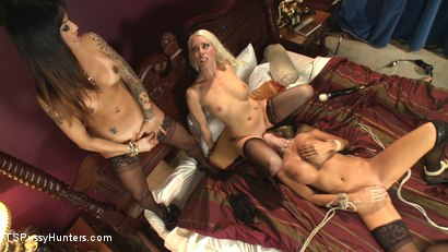 Photo number 14 from The QueenPin, The Fox & The Little Bird: Punishing a Narc in Sex Sting shot for TS Pussy Hunters on Kink.com. Featuring Lorelei Lee, TS Foxxy and Courtney Taylor in hardcore BDSM & Fetish porn.
