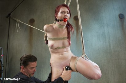 Photo number 15 from Fresh Meat - First Shoot Ever! shot for Sadistic Rope on Kink.com. Featuring Ashley Lane in hardcore BDSM & Fetish porn.