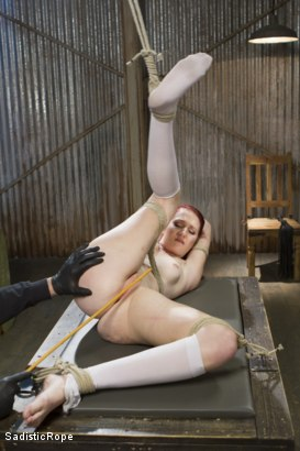 Photo number 4 from Fresh Meat - First Shoot Ever! shot for Sadistic Rope on Kink.com. Featuring Ashley Lane in hardcore BDSM & Fetish porn.