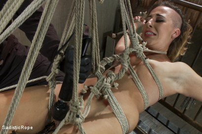 Photo number 14 from Helpless Whore Devastated by Extreme Bondage shot for Sadistic Rope on Kink.com. Featuring Andre Shakti in hardcore BDSM & Fetish porn.
