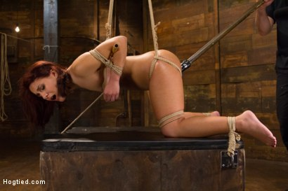Photo number 11 from Awesome Ass Aguilera Get Rough Treatment on HogTied shot for Hogtied on Kink.com. Featuring Liv Aguilera in hardcore BDSM & Fetish porn.