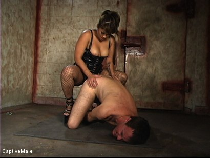 Photo number 8 from Red Ass shot for Captive Male on Kink.com. Featuring Wild Bill and DragonLily in hardcore BDSM & Fetish porn.