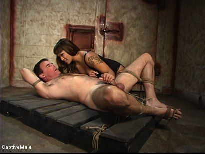 Photo number 11 from Red Ass shot for Captive Male on Kink.com. Featuring Wild Bill and DragonLily in hardcore BDSM & Fetish porn.