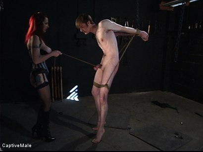 Photo number 7 from The Human Ashtray shot for Captive Male on Kink.com. Featuring Mz Berlin and Johnny Rocket in hardcore BDSM & Fetish porn.