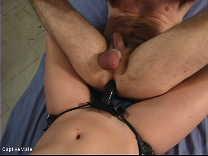 Photo number 12 from Use and Abuse shot for Captive Male on Kink.com. Featuring Bobbi Starr, Madison Young and Wild Bill in hardcore BDSM & Fetish porn.