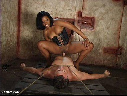 Photo number 13 from Craving To Get Laid shot for Captive Male on Kink.com. Featuring Dick Richards and Sydnee Capri in hardcore BDSM & Fetish porn.