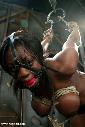 Photo number 10 from Jada Fire shot for Hogtied on Kink.com. Featuring Jada Fire in hardcore BDSM & Fetish porn.